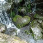 Mossy Heart Rock
