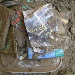 Books in Mud
